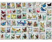 Butterflies Puzzle 500 pcs-EURO85005356