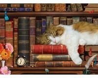The Cat Nap Puzzle 500 pcs-EURO85005545