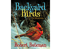 Backyard Birds: An Introduction by Robert Bateman-FIRE0228101557
