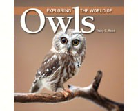 Exploring the World of Owls by Tracy-FIRE1554079578