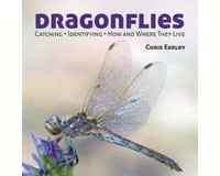 Dragonflies by Chris Earley-FIRE1770851860