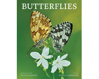 Butterflies by Ronald Orenstein-FIRE1770855809
