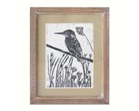 Pen & Ink Naturalist Bird Wall Decor-FOREFWAD02641