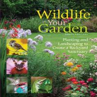 Wildlife in Your Garden-FCP1620081389