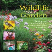 Wildlife in Your Garden-FCP1620081389