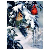 Natures Jewels 1000 Piece Puzzle-GEP102