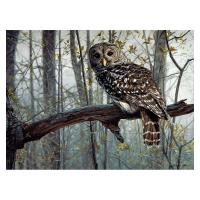 Spirit of the Forest 1000 Piece Puzzle-GEP104