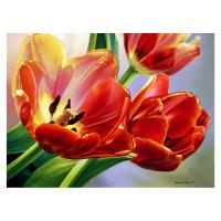 Tulips 1000 Piece Puzzle-GEP108