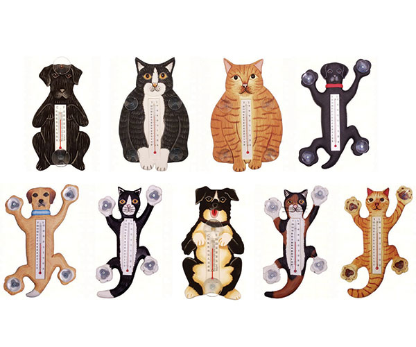Pet Thermometer Display