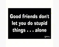 Magnet, Humorous Sayings, Good friends don't let you do stupid things...alone-GRIMMGOODMAG