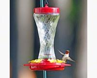 Paradise Glass Hummingbird Feeder-HIATT38231