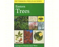 Peterson Field Guide To Eastern Trees-HM0395904558