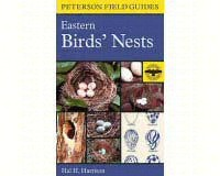 Eastern Birds' Nests-HM395936098