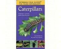 Young Naturalist Caterpillars-HM395979455