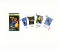 Playing Cards Birds North American-IMP144PLY