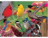 Puzzle Backyard Birds 500 piece Puzzle-IMP5213084S