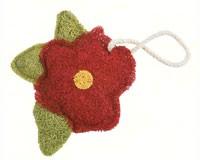 Hibiscus-LOOF6101