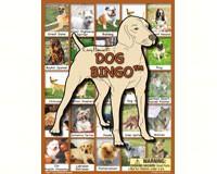 Dog Bingo-LH3277