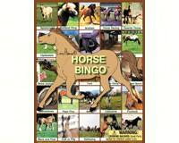 Horse Bingo-LH9177