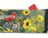 Cardinal View MailWrap-MAIL00115