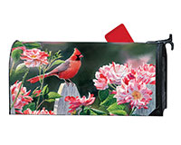 Cardinal with Variegated Roses MailWrap-MAIL01634