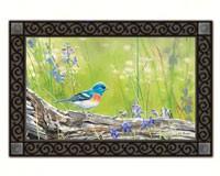 Meadow Bluebird Matmate-MAIL11272