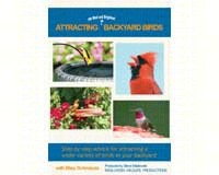 Attracting the Best and Bright-MASMA123DVD
