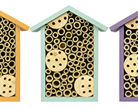 Bee House-NWPWH1AST
