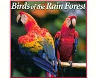 Birds of the Rain Forest CD-NS017