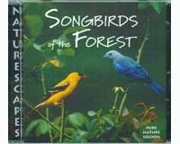 Songbirds of the Forest-NS056