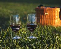 Handy Holders Wine Glasses-OAKPSM160