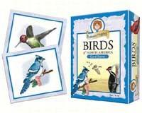 Prof Noggins Birds of NA-OM10414