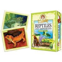 Professor Noggins Reptiles and Amphibians-OM11413