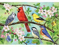 Bloomin' Birds 350 pc Family Puzzle-OM54606
