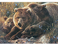 Grizzly Family - Family Pieces 350 pc puzzle-OM54624