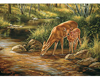 Deer Family - Family Pieces 350 pc puzzle-OM54626
