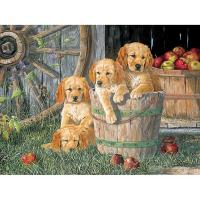 Puppy Pail 350 pc Family Puzzle-OM54638