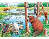 The Beaver Pond Tray Puzzle 35 piece Puzzle-OM58802