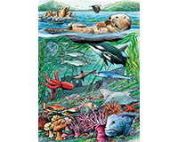 Life on the Pacific Ocean 35 pc Tray Puzzle-OM58803