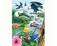 North American Birds Tray Puzzle 35 piece Puzzle-OM58809