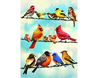 Blue Sky Birds 35 pc Tray Puzzle-OM58888