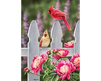 Cardinals & Peonies 1000 pc Puzzle-OM80010