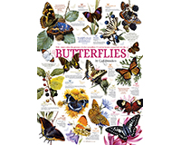 Butterfly Collection 1000 pc Puzzle-OM80015