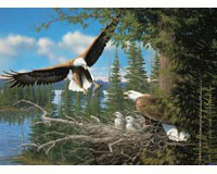 Nesting Eagles 1000 piece Puzzle-OM80070