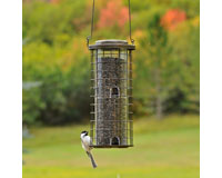 Squirrel Stumper Feeder-PP114
