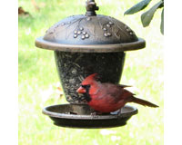 Holly Berry Gilded Chalet Feeder-PP305