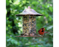 Small Panorama Feeder Copper-PP312C