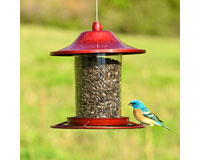 Red Sparkle Panorama Feeder-PP312R