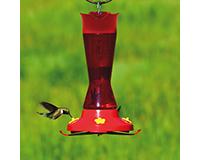 Plastic Pinch Waist Hummingbird Feeder-PP410P