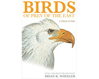 Birds of Prey of the East: A Field Guide by Brian K. Wheeler-PR978069111706